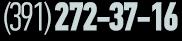 Позвонить (391)272-37-16